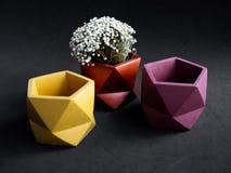 Beautiful colorful pentagon shape concrete planter and dried flower. Handmade  geometric cement pot for home decoration. Beautiful colorful pentagon shape stock photo