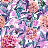 Beautiful colorful peony flowers with leaves, buds and pink outlines on white background. Seamless floral pattern. Watercolor painting. Hand drawn illustration Royalty Free Stock Photography