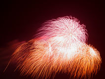Beautiful colorful red and orange fireworks Stock Images