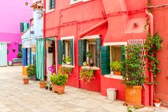 Beautiful colorful red small house with plants in Burano island near Venice, Italy.  stock photos