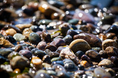 Beautiful colorful rocks on beach. Some beautiful colorful rocks on a beach. Picture has shallow depth of field. Bokeh is very nice. Color is vivid. Rocks are royalty free stock photos