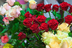 Beautiful colorful roses for sale at a shop. Royalty Free Stock Image
