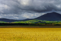 Beautiful colorful rural landscape with contrast areas of light Royalty Free Stock Photo