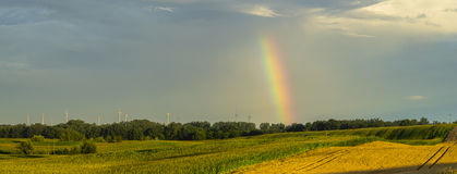 Summer rain and rainbow over the field,Late summer on the fields in germany in the morning Stock Image