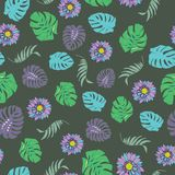 Beautiful and colorful tropical flowers seamless pattern vector stock photo