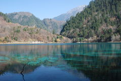 Beautiful & colorful water in JiuZhai, China Royalty Free Stock Photography