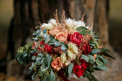 Beautiful colorful wedding bouquet Royalty Free Stock Images