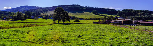 Beautiful colorized autumnal hills and meadows in Alsace Royalty Free Stock Images