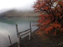 Autumn Colors Lake Pehoe Chile stock photos