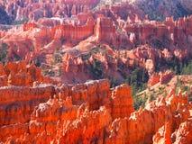Beautiful colors in Bryce Canyon National Park, Utah, USA Royalty Free Stock Image