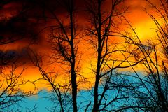 Colorful cloudy sky and trees in evening Royalty Free Stock Images