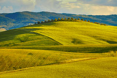 The beautiful colors of the spring in Tuscany Stock Photography