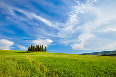 The beautiful colors of the spring in Tuscany Royalty Free Stock Images