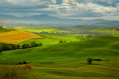 The beautiful colors of the spring in Tuscany Stock Image