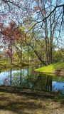 Beautiful colors of springtime Stock Image