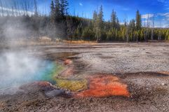 Beautiful colors in sunny day, Yellowstone National Park, Wyoming Stock Photos