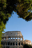 Beautiful colosseum Royalty Free Stock Photos