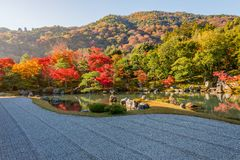 Beautiful colour leaves and reflection in the pond at Tenryuji temple. Beautiful colour leaves and reflection in the pond at Tenryuji temple, Arashiyama, Kyoto Stock Image