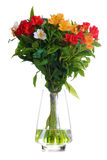 Beautiful Coloured Flowers in the Glass Vase Isolated on White Stock Photo