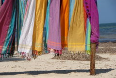 Beautiful colourful scarfes Stock Image