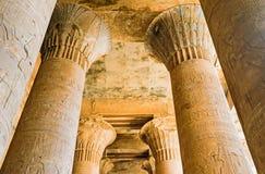 The beautiful columns Stock Image