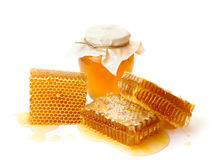 Beautiful combs and honey Royalty Free Stock Image