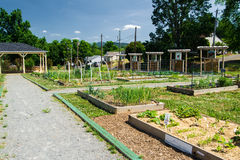 Beautiful Community Garden. Roanoke, VA – May 24: Mountain View Community Garden in Roanoke, VA on the 24st of May 2015 stock image