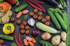 Beautiful composition of different vegetables, neatly laid out on a dark background Stock Images