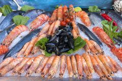 Seafood on ice. A beautiful composition of fish and fresh seafood with lemon on ice Stock Image