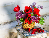 Beautiful composition of flowers Stock Images