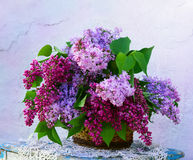 Beautiful composition of flowers in  basket Stock Images