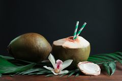Beautiful composition with fresh green coconuts. On table against dark background Stock Photos