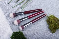 Beautiful composition: professional make-up brushes and tools, decorative elements stock image
