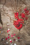 Beautiful composition with red Rowan berries and dry branches. Autumn wedding decoration stock photos