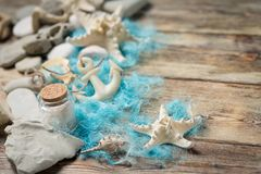 Beautiful composition of seashells and stones Royalty Free Stock Photos
