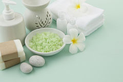 Beautiful composition of spa treatment products setting on light Royalty Free Stock Photography