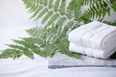 Beautiful composition of spa treatment with white cotton towels on marble plate and fern branches, minimal spa relax concept, eco. Friendly, natural cosmetic stock photography
