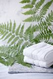 Beautiful composition of spa treatment with white cotton towels on marble plate and fern branches, minimal spa relax concept, eco. Friendly, natural cosmetic stock image