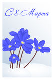 Beautiful congratulation or greeting card for women`s day with Hepatica in snow. Russian translation: 8 March. Holiday. Greetings background in simple cartoon Royalty Free Stock Photos