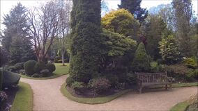 Beautiful conifer garden with blooming trees and bushes