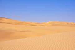 The Beautiful Contrast of the Desert Stock Photos