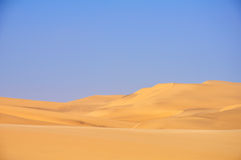 The Beautiful Contrast of the Desert Stock Photography