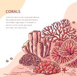 Beautiful coral card for print royalty free illustration