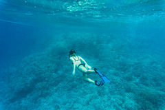 Beautiful coral reef with young freediver woman, underwater life. Copyspace for text Stock Photography