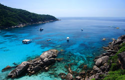 Beautiful coral view at similan island Royalty Free Stock Image