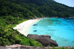 Beautiful coral view at similan island Royalty Free Stock Images