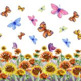 Beautiful coreopsis flowers and flying butterflies on white background. Seamless floral pattern. Watercolor painting. Hand drawn and painted illustration vector illustration