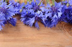 The beautiful cornflower on wooden background Stock Photo