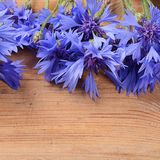 The beautiful cornflower on wooden background Royalty Free Stock Image