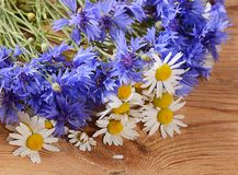 The beautiful cornflower on wooden background Royalty Free Stock Photography
